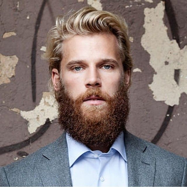 popular mens haircuts 307 best beards executive images on beard 9503 | 62b74338515e6207ca0e1aece6eb9503