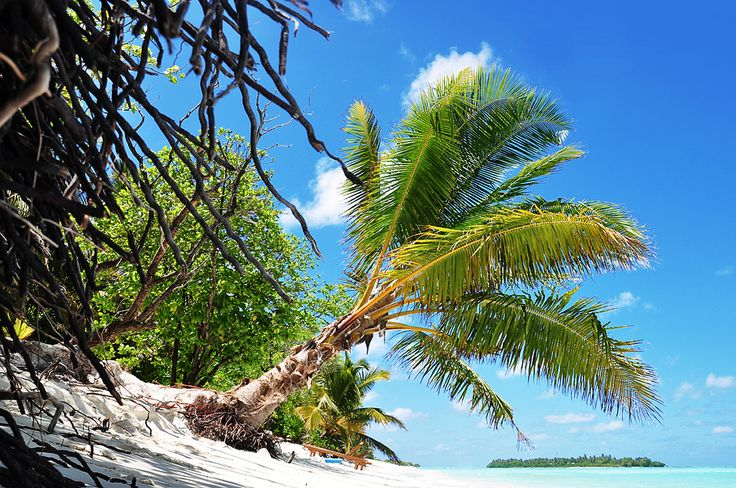 https://flic.kr/p/8RRdQH | Maldives: The fragile islands