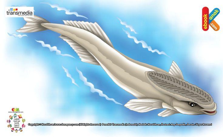 Ikan Remora Teman Baik Hiu