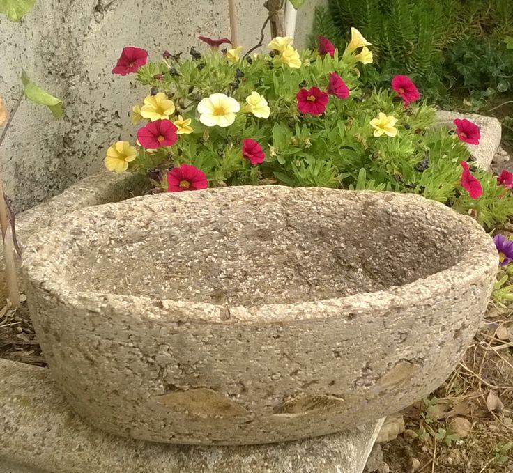 oltre 25 fantastiche idee su vasi di cemento su pinterest