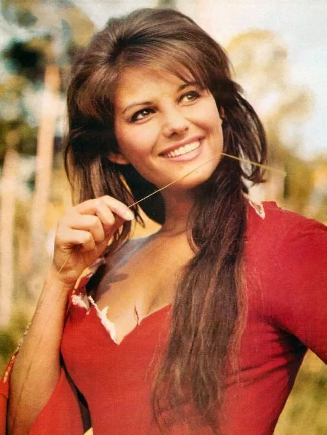 Claudia Cardinale is listed (or ranked) 4 on the list The Hottest Pin-Up Girls from the 1960s