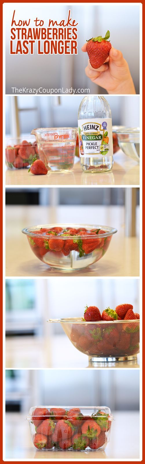 HOW TO MAKE STRAWBERRIES LAST LONGER. The Vinegar Wash Recipes You've Seen are WRONG. Here's the DIY berry wash that actually works!