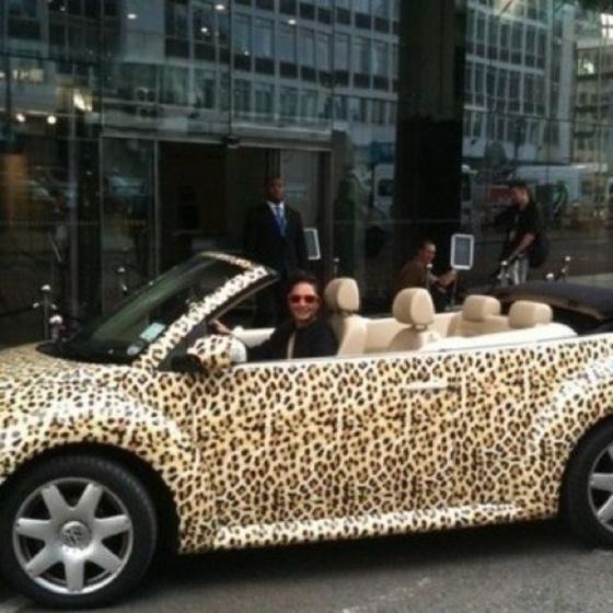 Car animal print