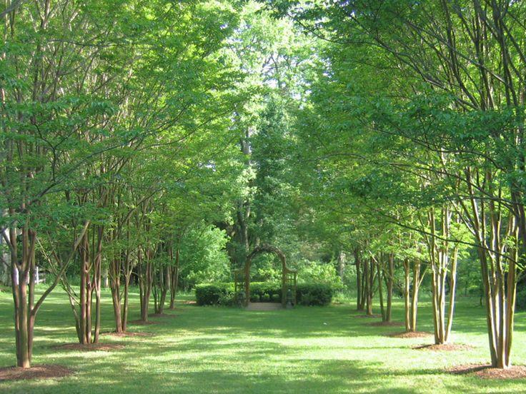 Richmond, VA: Jefferson's Tuckahoe Garden http://www2.fiskars.com/Gardening-and-Yard-Care/Projects/Prepping-Design-Planting-Harvest/Design/Great-Gardens-to-Visit-Thomas-Jeffersons-Tuckahoe-Monticello-Gardens#.Uz63ez99fhg