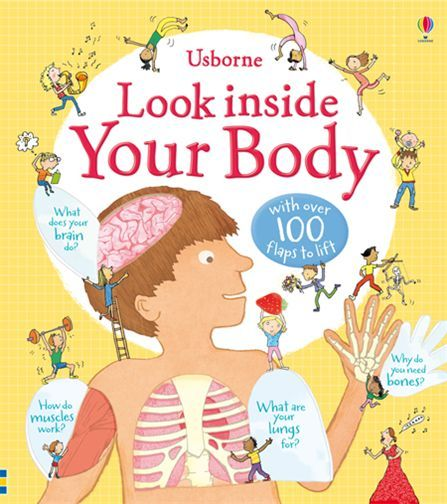 Look Inside Your Body Lift the Flap Book