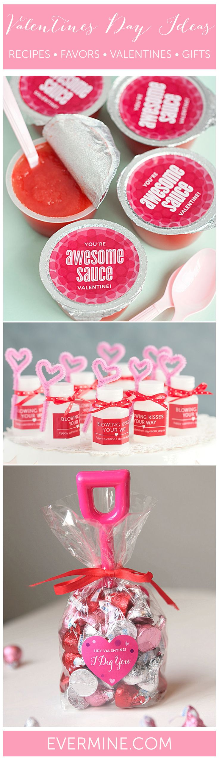 Valentines Day Ideas | Valentines Recipes, Favors, Crafts, Gifts, Kids Valentines | Evermine.com