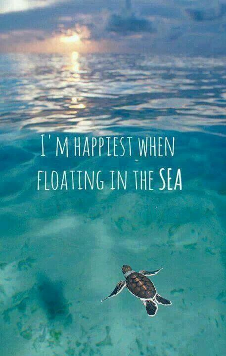 Exactly how I feel