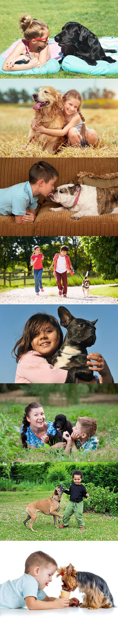 Family-Friendly Dog Breeds | Some of the best canines for children