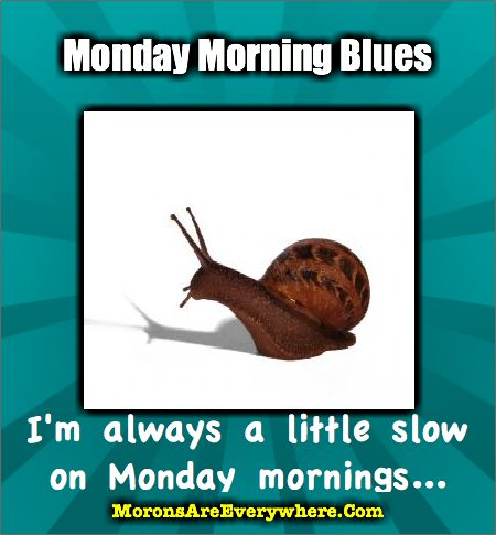 Monday Morning Blues... Are you slower on Monday mornings?