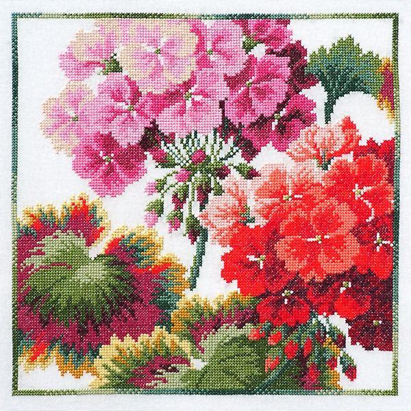 Pelargon i ruta Sheila Hudson - cross stitch designs - gallery - geranium