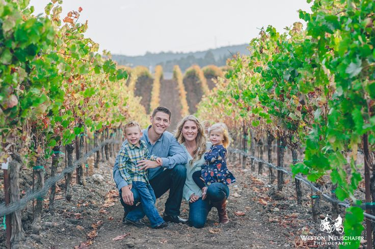 Family photos at a vineyard familyphotos vineyard