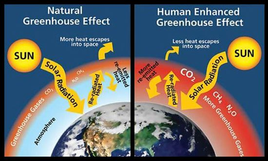 venn diagram global warming and greenhouse effect Acid rain, ozone depletion, global warming investigated by svante arhenius the greenhouse effect is when the temperature rises because the.