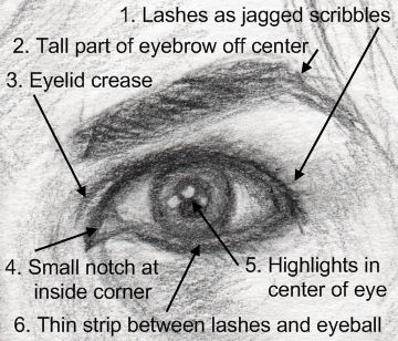 Image from http://www.learn-to-draw-lessons.com/images/6eye-rules.gif.