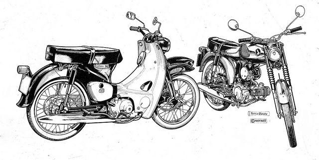 honda bikes 50cc