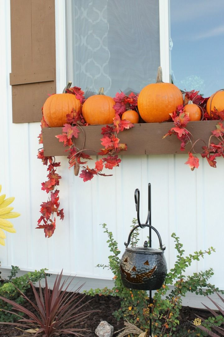 298 best best of what rose knows images on pinterest for Cheap fall decorations for outside
