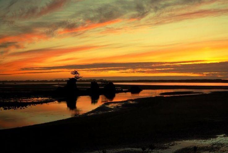 1000 Images About Siletz Bay National Wildlife Refuge On