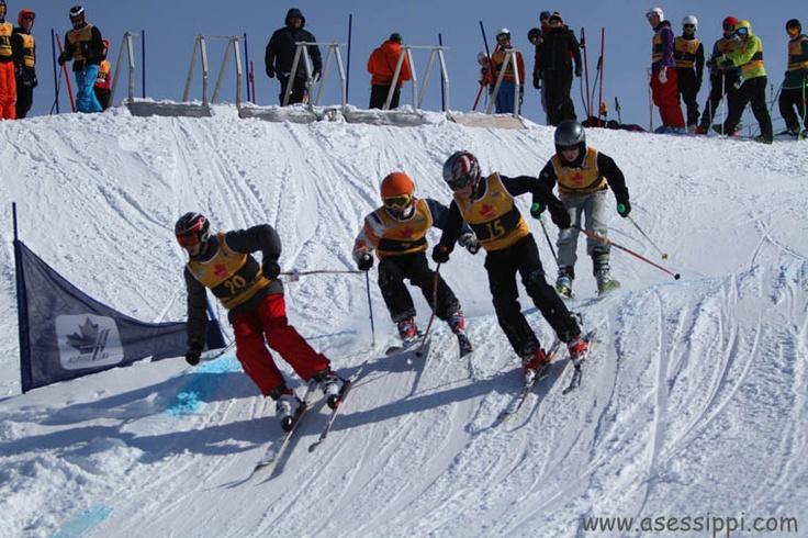 Asessippi Ski Cross