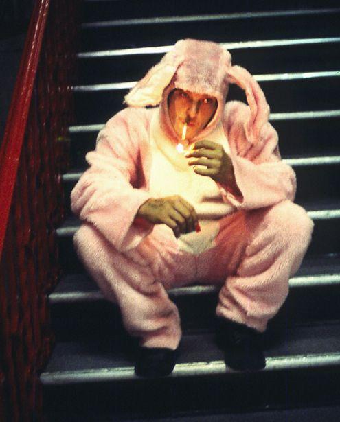 Norman Reedus the bunny