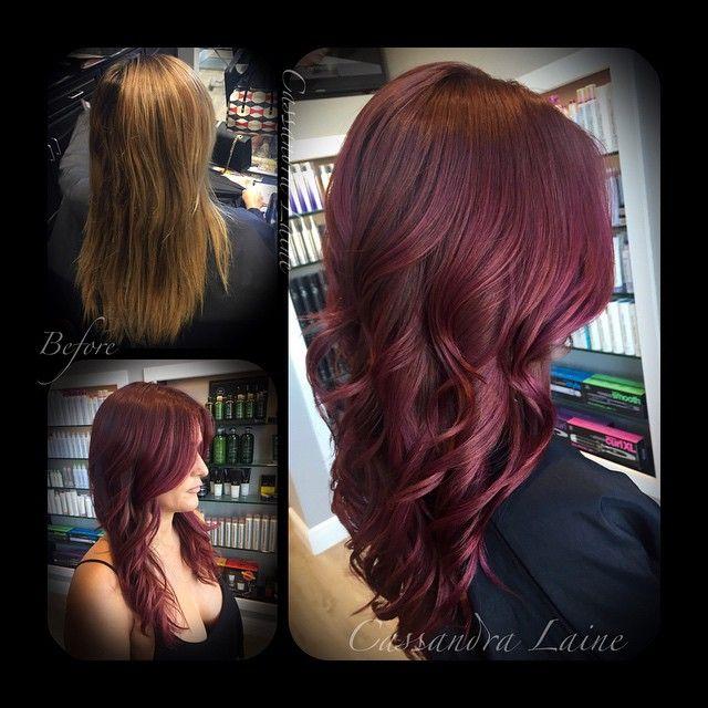 Argan Oil Hair Color Lilac