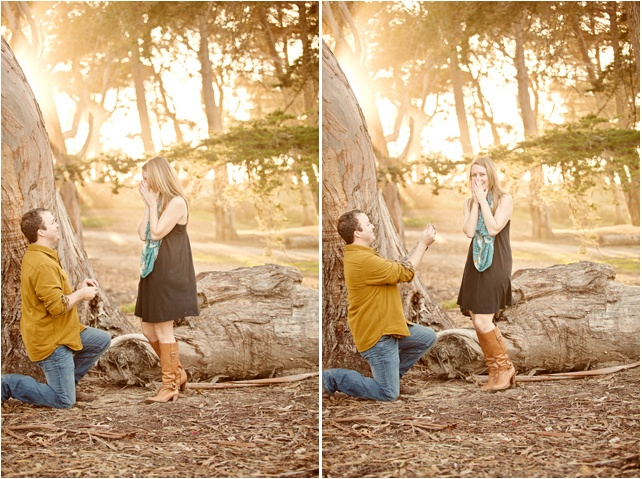 He Planned A Couples Photo Shoot And Surprised Her With An Engagement It