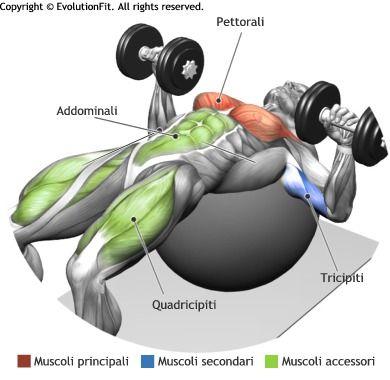 pettorali-spinte-manubri-stability-ball