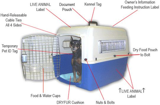 Great website explaining how to travel with a pet, including unacceptable pet crates.  Pet Airline Carrier Instructions