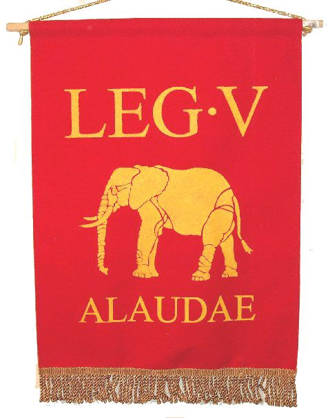 29 best images about Roman Army - Legion on Pinterest ... Roman Legion Banners