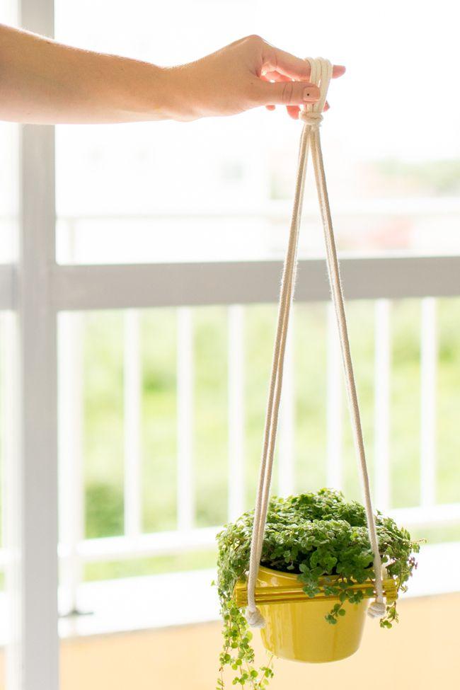 Ideia com palito de sorvete: DIY suporte para planta   A Parede Indecisa
