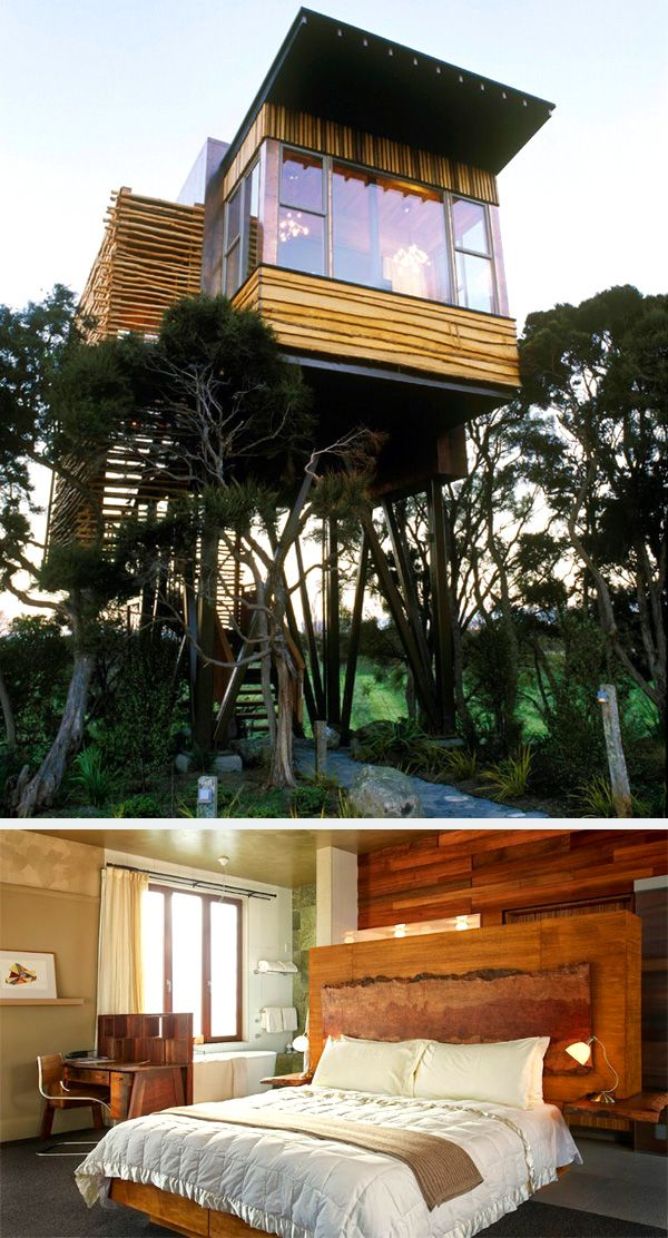 Hapuku Lodge and Tree Houses. Guests can choose to stay in two level family tree houses or a stand alone Olive suite apartment. Located on New Zealand's south island, the lodge is near the top site for spotting whales and dolphins.