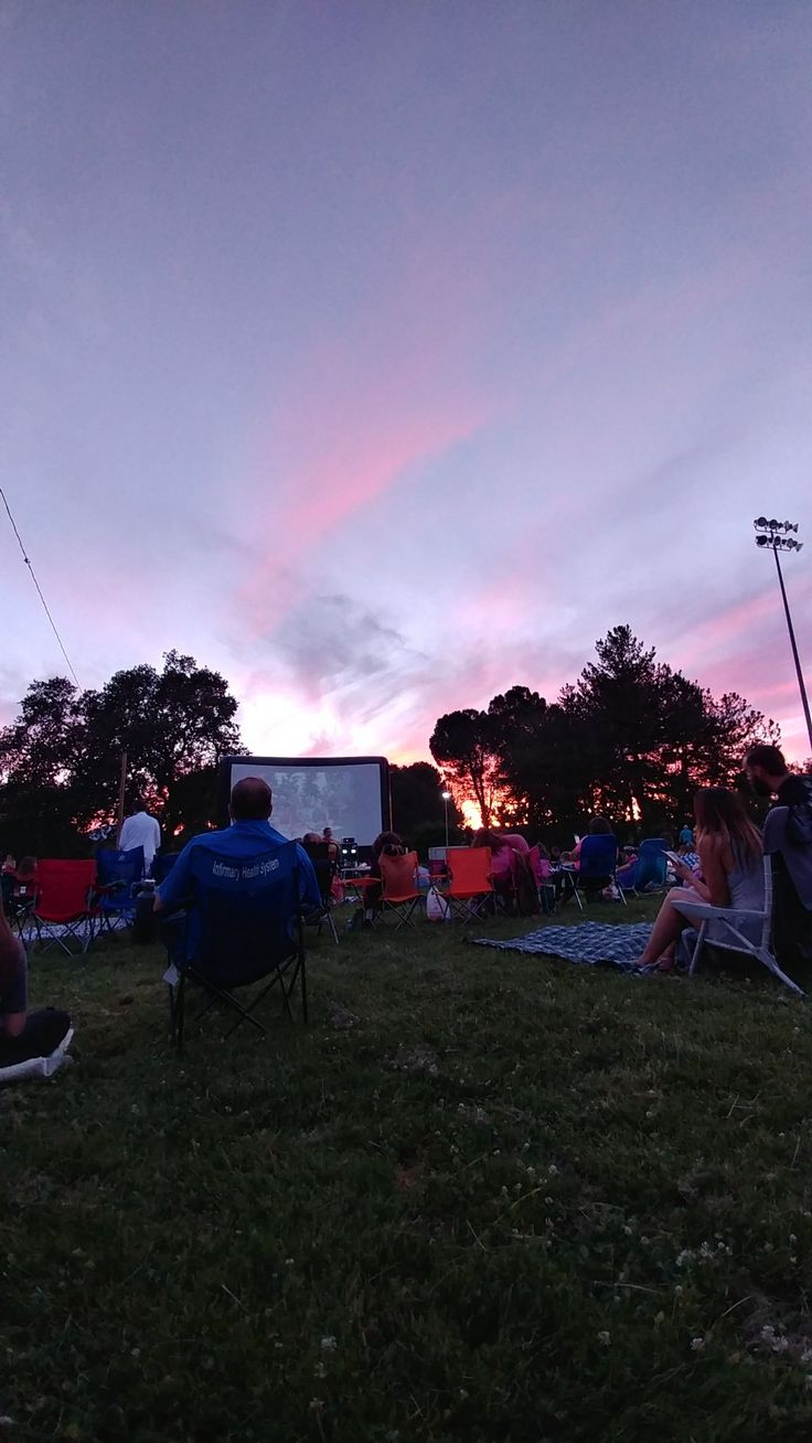 Bucket list...movies at the park