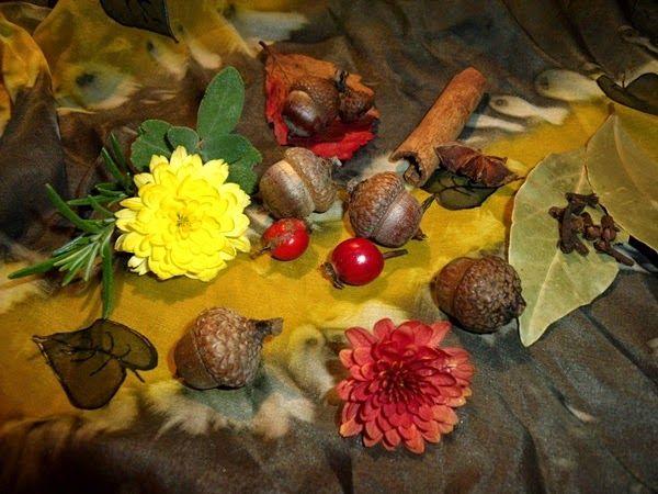 MishaBeauty - DIY kosmetika: Podzimní směsi esenciálních olejů do aromalamp či ...