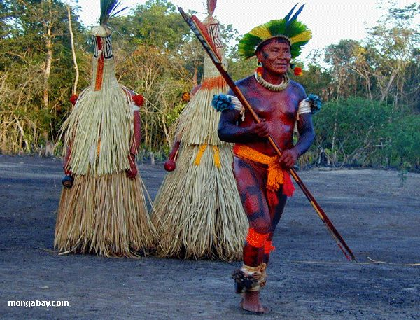 Amazon+Rainforest | Amazon Rainforest