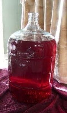 Liquore all'amarena | www.iopreparo.com
