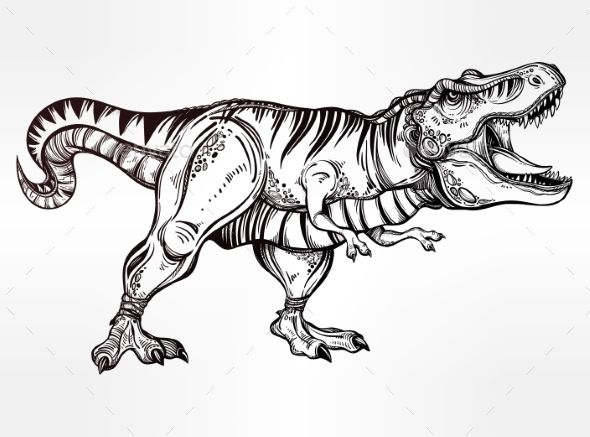 coloring에 관한 12개의 최상의 pinterest 이미지  색칠 공부 자료 공룡 및 쥬라기 공원