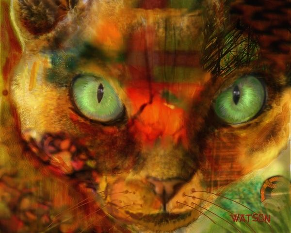 Devon Rex Cat Art Print