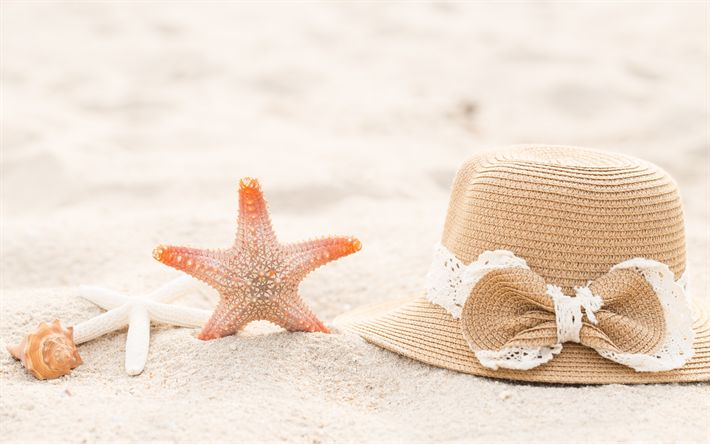 Download wallpapers beach accessories, summer vacation horse, beach, sand, hat, starfish, seashells