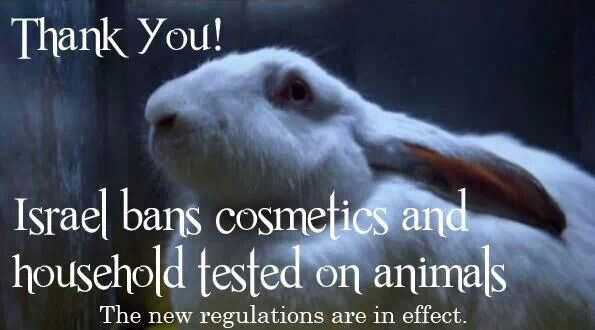 Israel ban on animal testing, animal cruelty How come all these other countries figured out to ban animal testing, but in America were still using these draconian techniches? It time the U. S.  reconsiders how high on the moral ladder we actually stand.