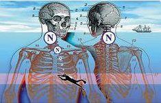 AIRLIFE MUNDIAL te indica los padecimientos urgentes que se tratan con oxigenación hiperbárica destacan: pie diabético, intoxicación por monóxido de carbono, humo o cianuro y otros venenos tisulares, gangrena gaseosa, enfermedad descompresiva (por buceo),síndrome compartimentar y otras isquemias agudas traumáticas. También el herpes zóster, la oclusión de la arteria central de la retina y la neuritis óptica. http://airlifeservice.com/