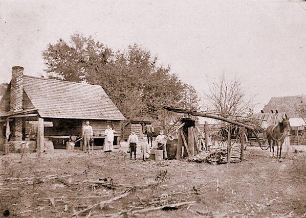 Cane grinding in Berrien County, GA circa 1913