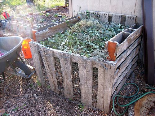 composting how to and tips. blog.