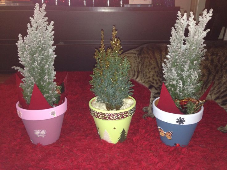 We even gifted our fellow small biz with #Pixipots filled with trees!