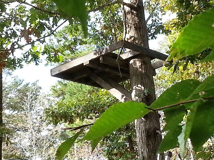 260 best images about tree houses in deer stands on for Build your own tree stand