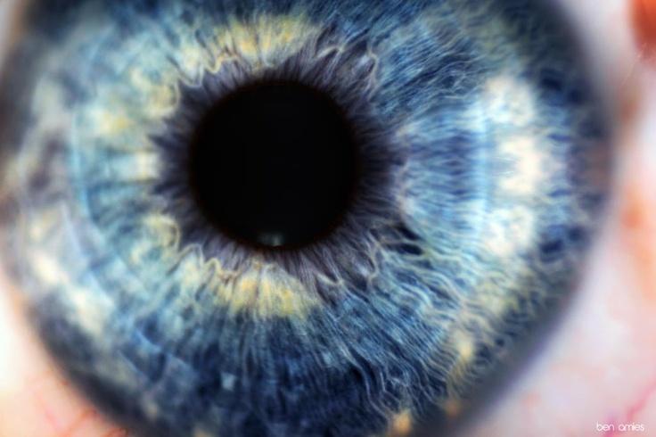 Macro Blue Eye