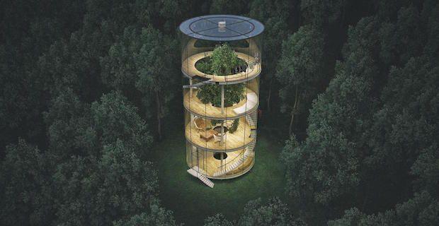 Tree in the House | A. Masow Architects | Almaty (Kazakistan)