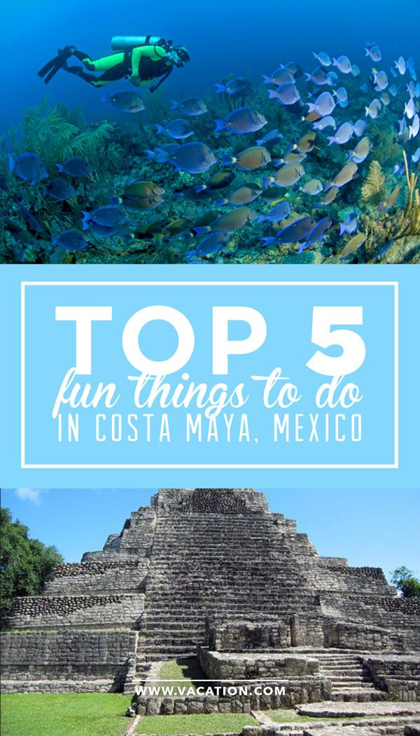 When you're looking for the best travel deals and cruises to Mexico, most people consider Cozumel or even Cancun. However, Mexico has a hidden gem known as Costa Maya situated just along the Yucatan Peninsula's Caribbean coastline. Click to check it out!
