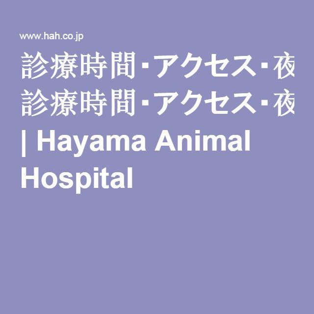 診療時間・アクセス・夜間診療|葉山どうぶつ病院|神奈川県葉山町の動物病院 | Hayama Animal Hospital