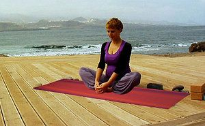 Effective #YogaExercisesMat for Maintaining A Good Health  Check out more on this blog @ http://goo.gl/QPSHtM