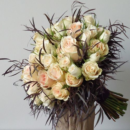 feathery agonis foliage and blush roses
