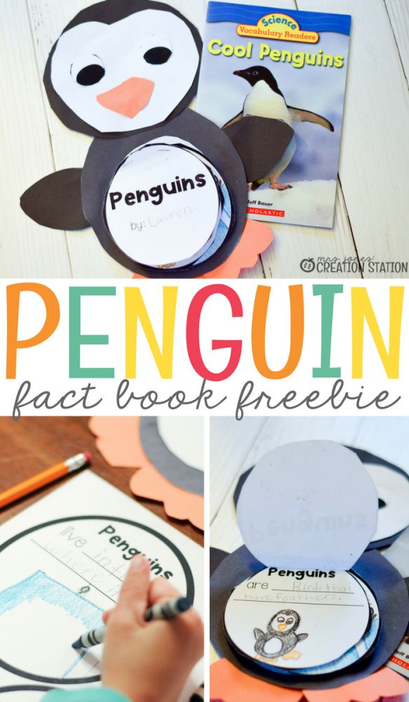 This penguin activity puts a fun, new and unique spin on learning informational texts. Students have a blast learning all about penguins and gathering all sorts of information for their very own penguin flip book.