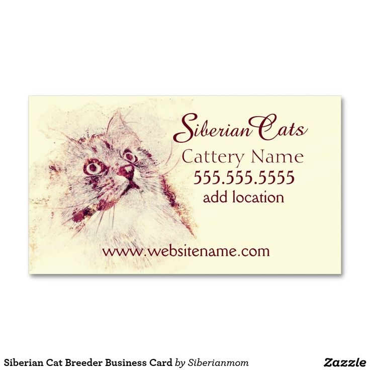 Siberian Cat Breeder Business Card featuring original artwork by Siberianmom of Zazzle.com